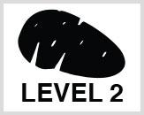 Dane-Level-2-protection-Icon